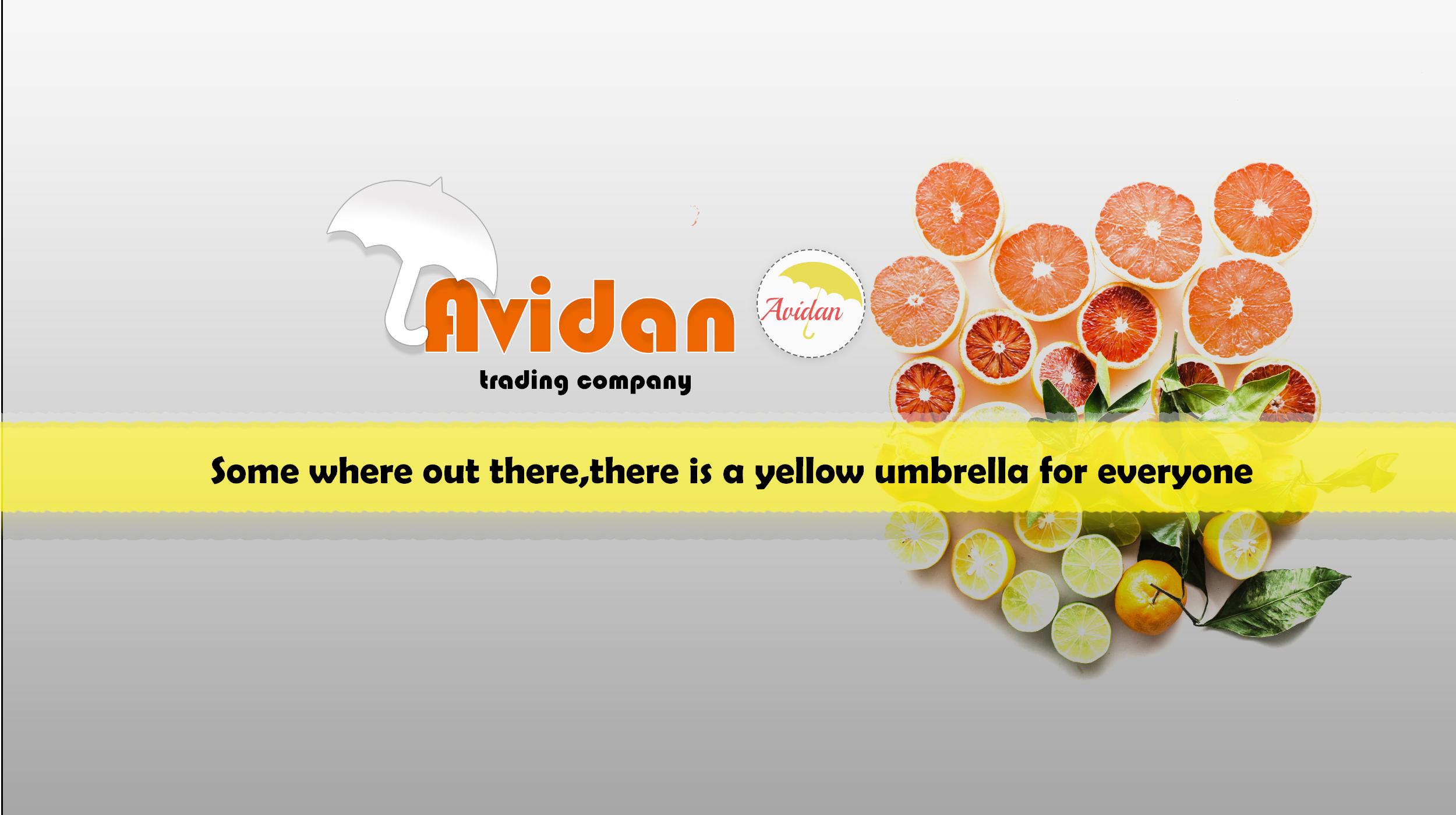 Avidan Food Trading Company