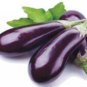 Export Eggplant1