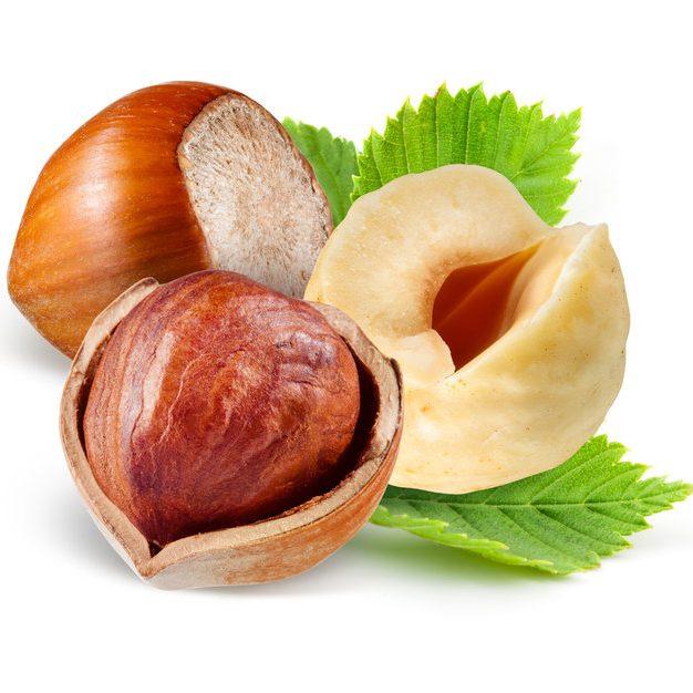 Hazelnut3