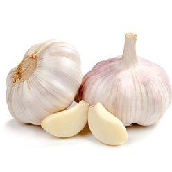 Garlic1-1ok