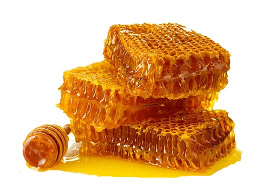 عسل ارگانيك
